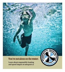 9c - 2013 - Safe & Quiet Lakes - Swimmer poster b