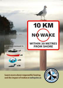 10km-Seagull-Front